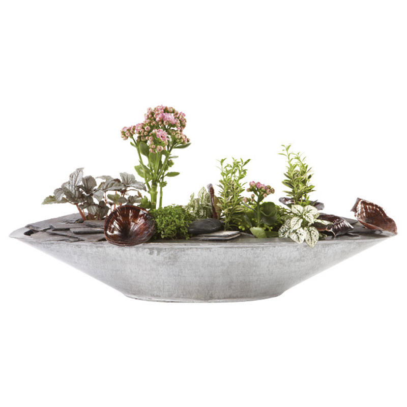 Plantes Vertes Et Fleuries